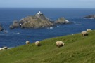 Muckle Flugga Lighthouse, Out Stack, Northernmost Point In UK Behind, Off Herma Ness, Unst