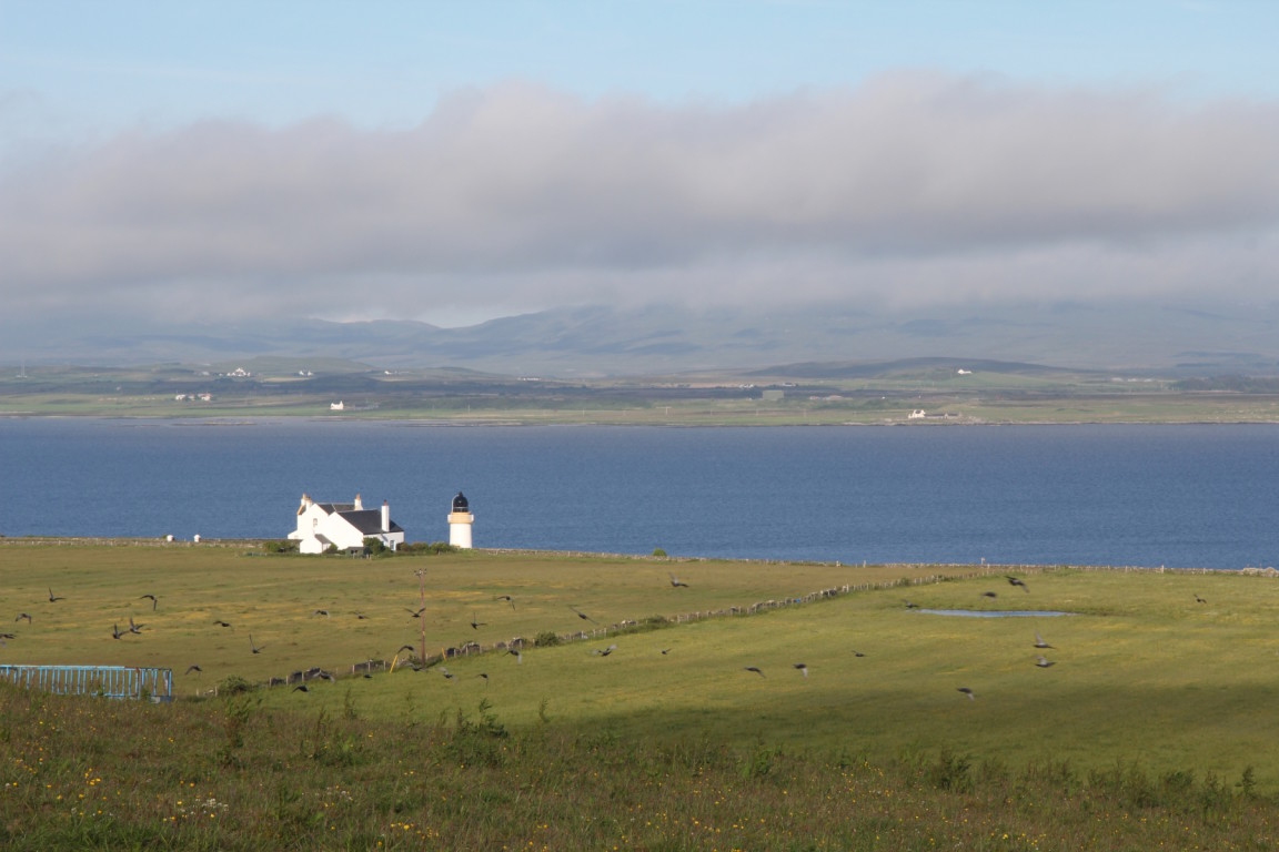 View From Cottage At Octomore Farm, Port Charlotte, Islay