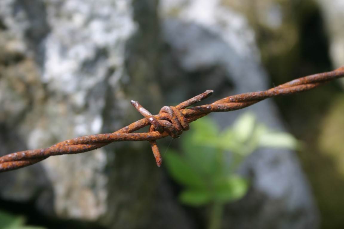 Barbed Wire, Dartmoor