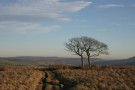 On Way Over Nether Moor