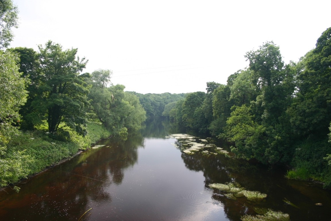 View From Bridge Over River Tees At Low Dinsdale