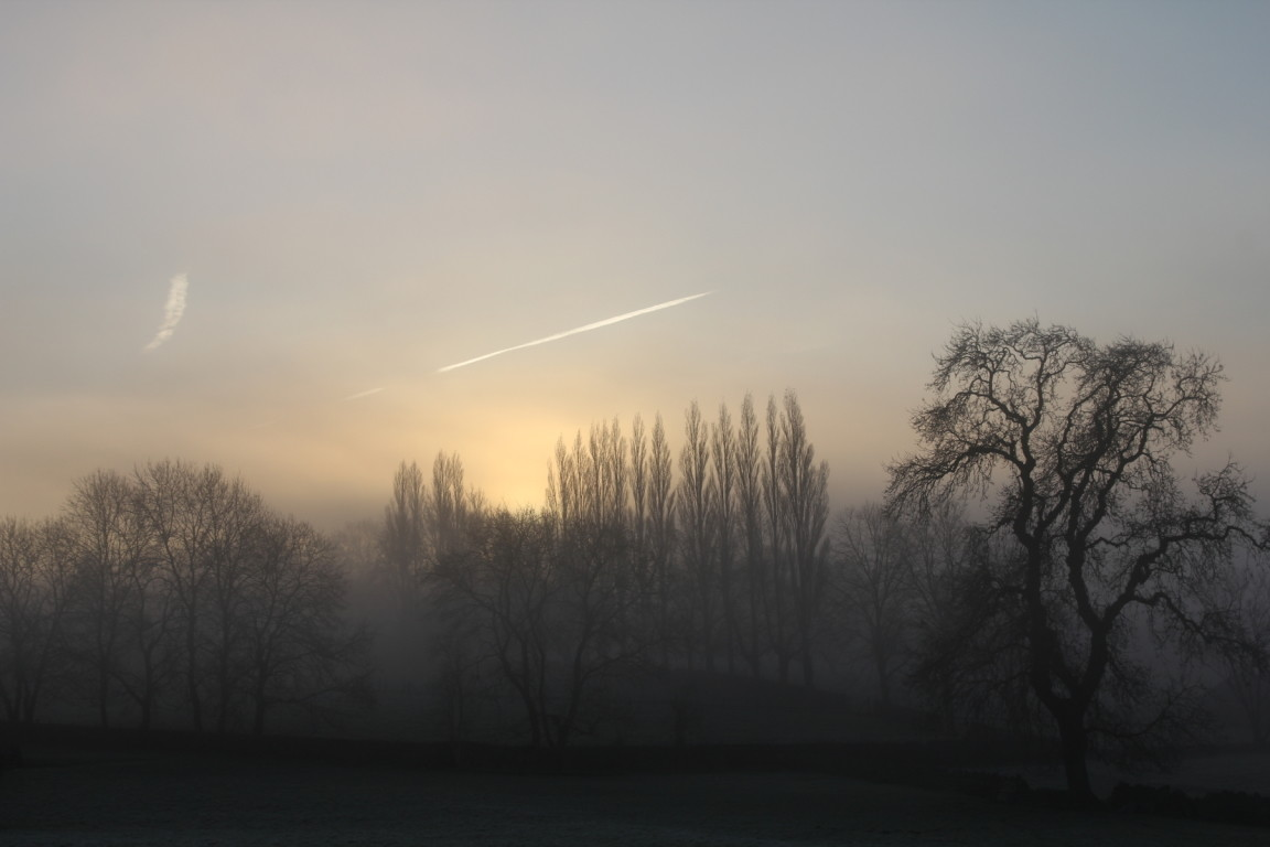 Misty Morning, Guiseley