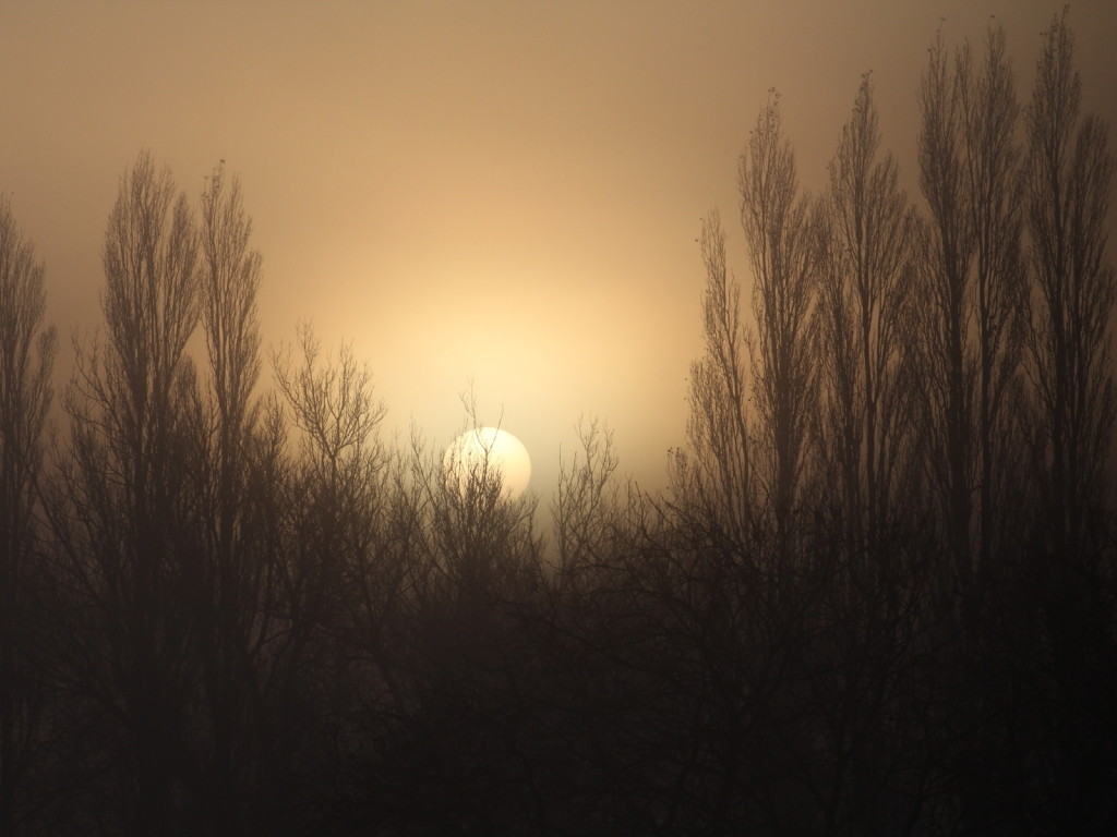 Sunrise through Mist, Guiseley