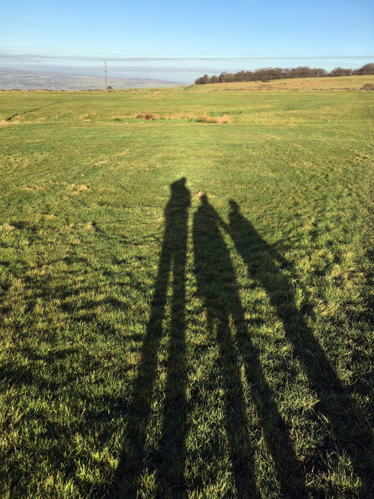 Shadows, the Chevin