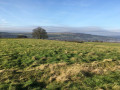 New Year's Eve Walk on the Chevin