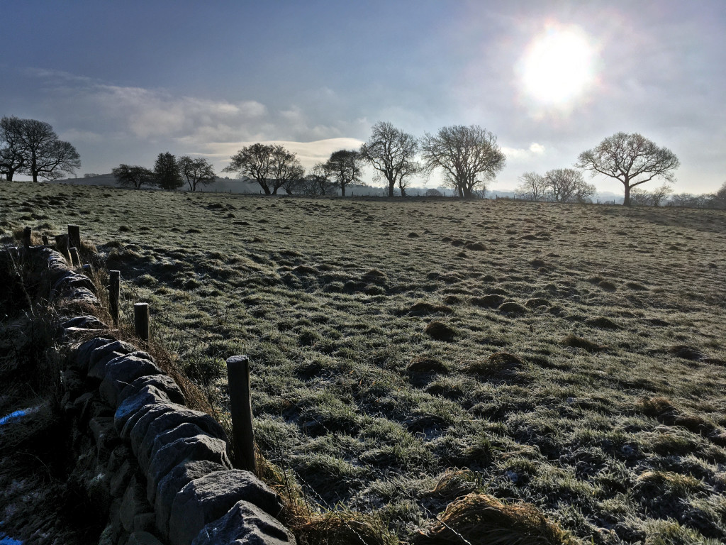 Frosty Fields Near Guiseley