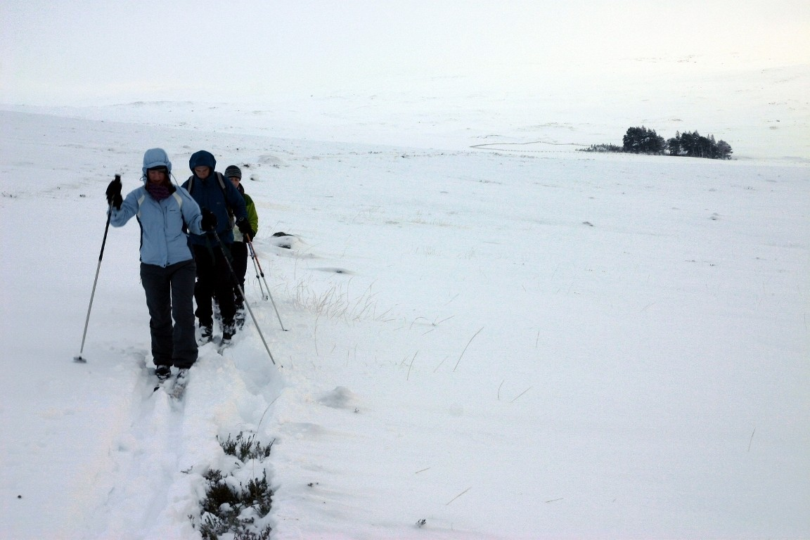 Debbie, Pete And Simon Cross Country Skiing, Balmoral Forest