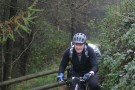Will, Afan Forest